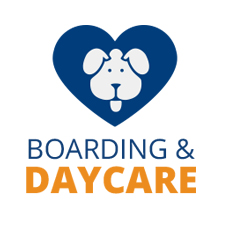 Boarding & Daycare