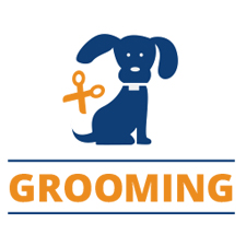 Dog Grooming - Dog Obedience Training, Naples FL